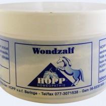 Hopp Wondzalf