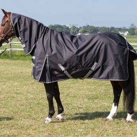 Harry's Horse Regendeken Thor 0gr. met nek Stretch limo