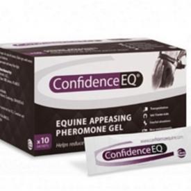 Confidence EQ – 10 sachtets