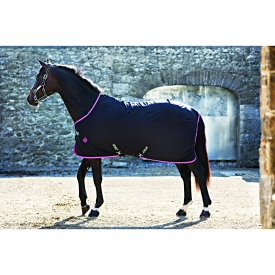 Amigo Stable Sheet Pony X Sur