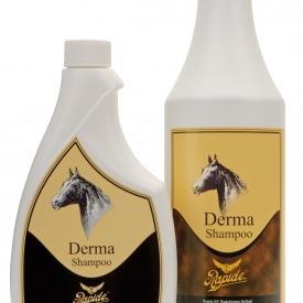 Derma shampoo Rapide 500ml(VPE 12 stuks) – 500